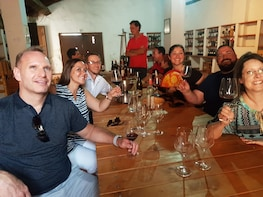 Valencia Wine Tour Wineries in Utiel Requena