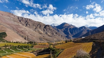Full Day Elqui Valley - Chile
