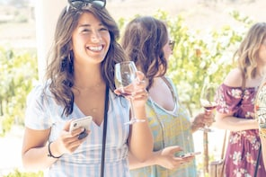 All-Inclusive Wine Tasting Tour from Santa Ynez Valley