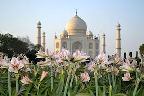 Delhi to Agra Taj Mahal Private Day Trip by Express Train