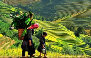Sapa Trekking And Homestay 2 Days 1 Night