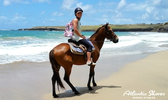 horsebackriding in the beach and ziplinning