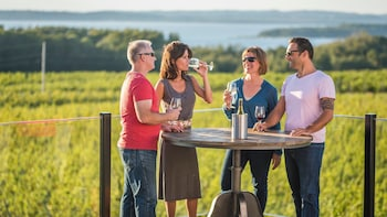 5 Hour Traverse City Wine Tour: 5 Wineries on Old Mission
