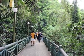 Poring Hot Springs Tour from Kota Kinabalu