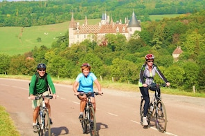 Single Day Bike and Wine tour in Burgundy France