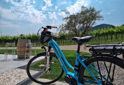 Bike Tour in the Euganean Hills