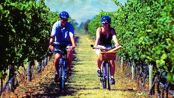 Hawkes Bay Wineries Self-Guided Bike Tour