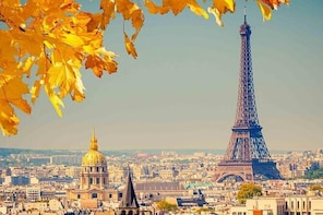 Paris by yourself with English Chauffeur by Luxury Van - 8 hrs disposal
