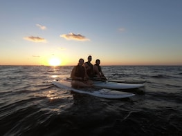 2 Hour Guided Paddle Board Tour - Joe's Bayou