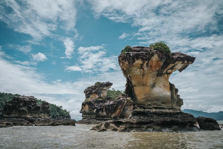 Show item 1 of 10. Sarawak Bako National Park Tour with Sea Stack