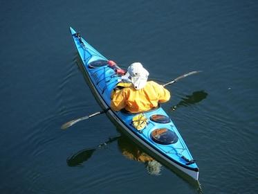 kayak-163892_1280.jpg