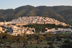 Day Excursion to Meknes, Volubilis and Moulay Idriss