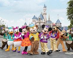 Disneyland Tour with Transfers