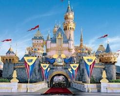 Disneyland Tour+Disneyland Meal Coupon with Transfers