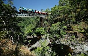 Visit Kuranda - Train up, Skyrail down