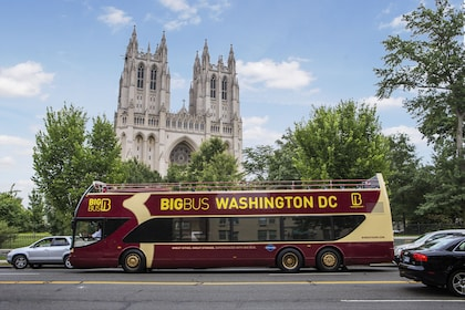 Sightseeing bus in Washington DC