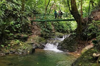 haciendaebano-safari-tropical-tour-033.jpg