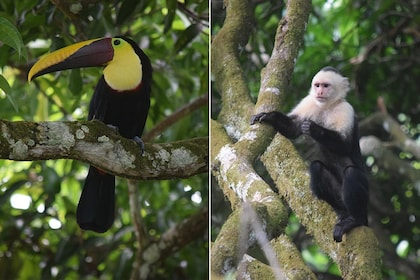 haciendaebano-safari-tropical-tour-022.jpg