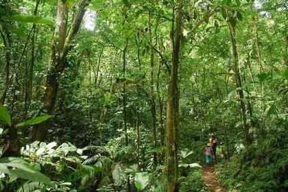 haciendaebano-safari-tropical-tour-014.jpg