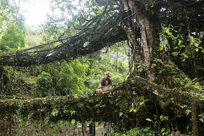 Excursion to Laitkynsew to see root bridge-Shillong