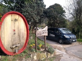 OLIVE OIL AND WINE, EXCELLENCES OF THE EUGANEAN HILLS