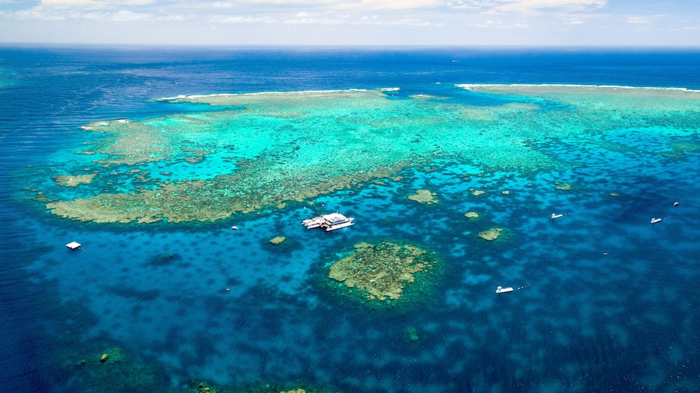 Show item 5 of 8. Quicksilver Great Barrier Reef Agincourt Reef Cruise