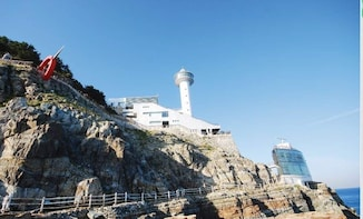 Busan East Coast Cultural Day Tour by KTOURSTORY