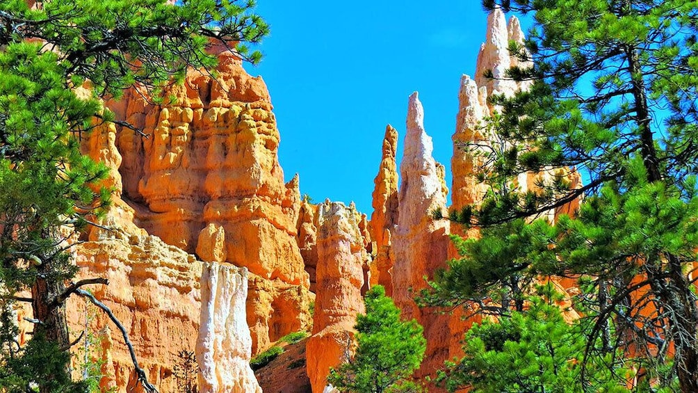 Zion and Bryce Canyon National Parks Bus Tour From Las Vegas