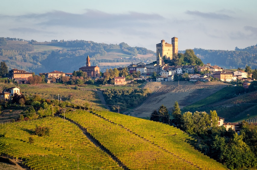 Show item 1 of 9. Private Tour: Piedmont Wine Tasting of the Barolo Region