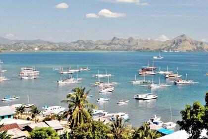 Aerial view of Labuan Bajo bay in Flores.jpg