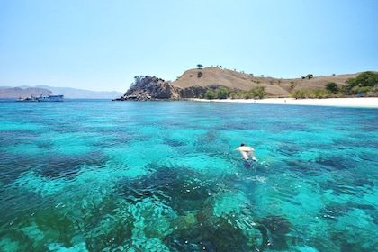 Snorkeling with the beautiful natural surroundings.jpg