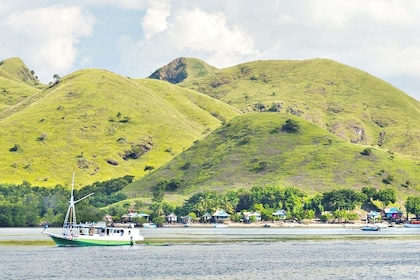 The legendary Komodo Island which you will visit after blue tropical waters and past hundreds of smaller islands.jpg