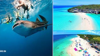WHALE SHARK WATCHING+SUMILON SANDBAR+PESCADOR ISLAND HOPPING