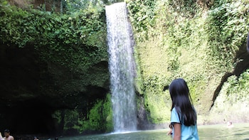 Best of East Bali including Temples and Waterfall