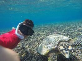 Sharing Snorkelling Trip To Gili Trawangan