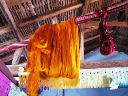 Day trip to Pochampalli for its textile traditions-Hyderabad