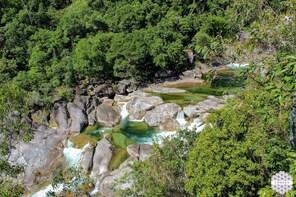 Around The Creek (Cairns Tour)