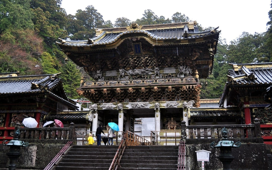 11-hour Nikko tour to/from Tokyo with Private Car