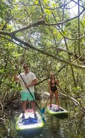 Couple in Mangroves.jpg