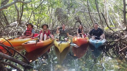 Family Kayak tour through Mangroves.jpg