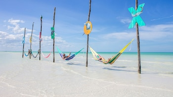 Holbox Express Day Tour