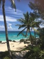 The Bermuda rum swizzle beach day experience