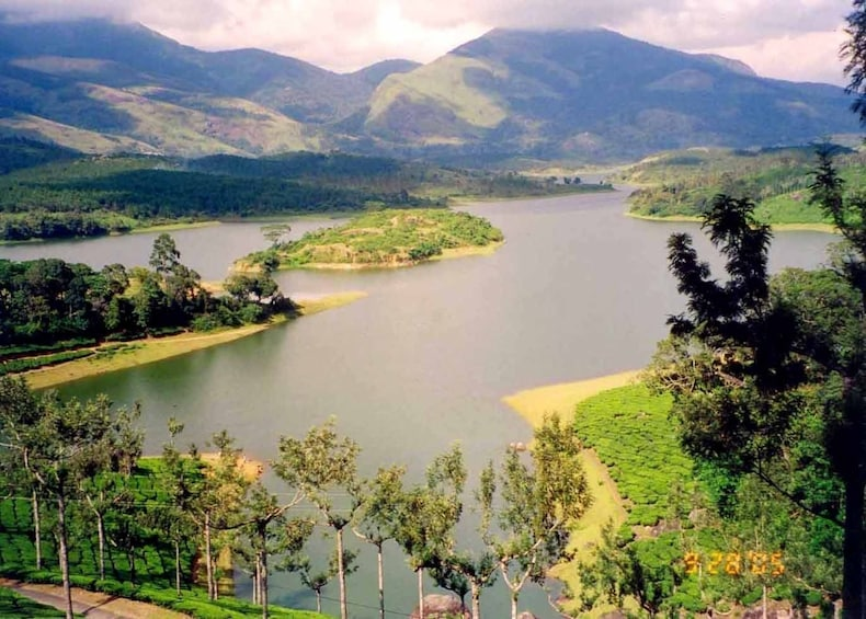Same Day Tour Of Munnar From Kochi