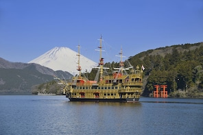8-hour Mt.Fuji & Hakone frm Tokyo to Hakone with Private Car