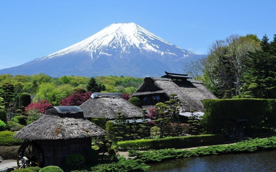 Show item 3 of 5. 9-hour Mt.Fuji & Hakone to/from Odawara with Private Car