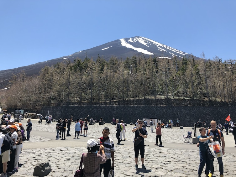 Show item 3 of 5. 9-hour Mt.Fuji tour to/from Yokohama with Private Car