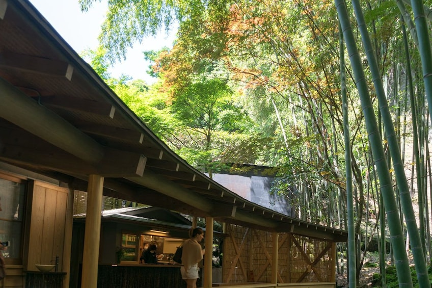 Show item 2 of 6. 9-hour Kamakura tour, from Tokyo to Hakone with private car