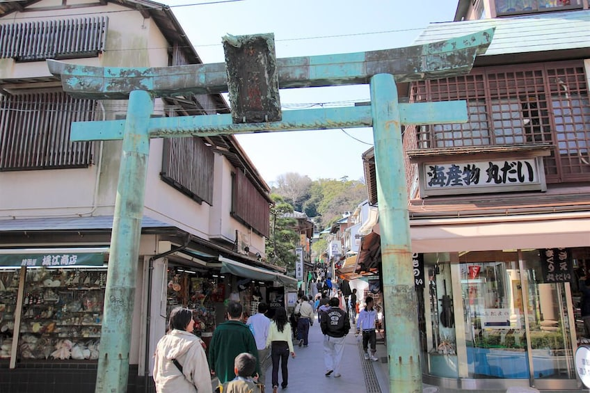 Show item 5 of 6. 9-hour Kamakura tour, from Tokyo to Hakone with private car