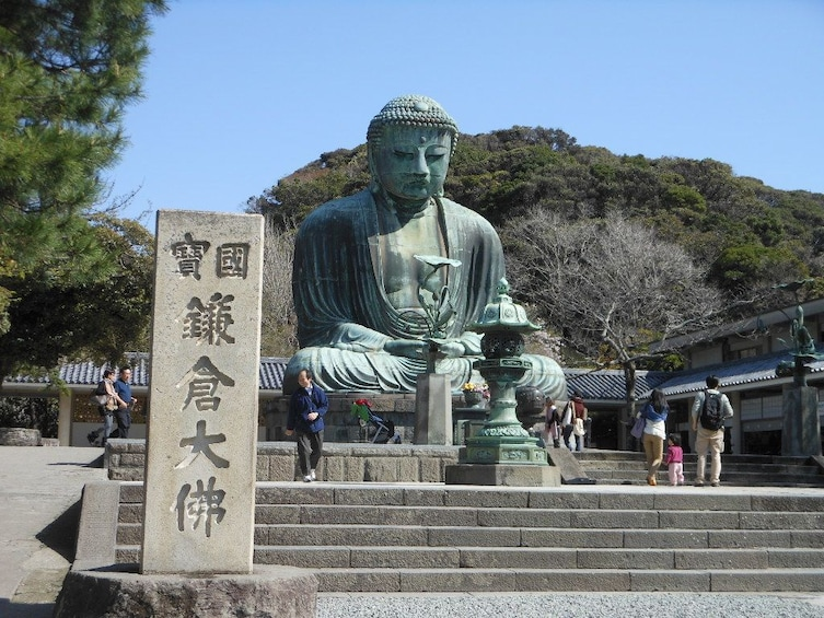 Show item 1 of 6. 9-hour Kamakura tour, from Tokyo to Hakone with private car