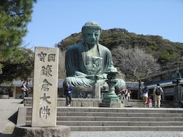 9-hour Kamakura tour, from Tokyo to Hakone with private car